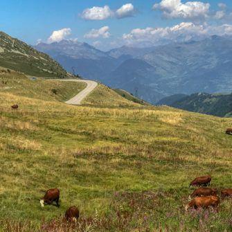Mountain pastures on the Col de la Madeleine