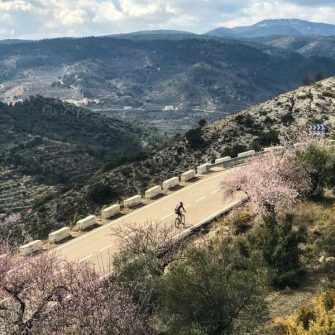 Aerial photo of cyclist climb a mountain road with almond blossom and road markers