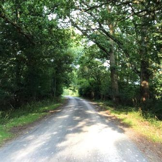 The rural Spithandle Lane in Sussex on the course of the Velo South sportive