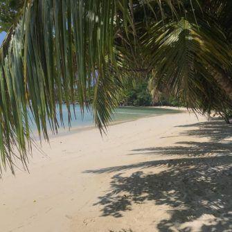 Beach at the Constance Ephilia hotel Seychelles