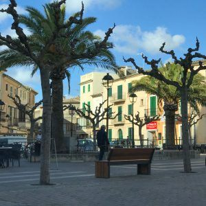 Cycling Mallorca where to stay: Campanet is an excellent choice. This is Campanet's central square with trees all the way around it