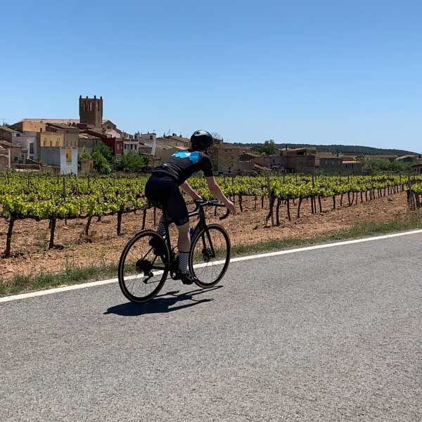 Cyclist cycling catolinia, past vines and village