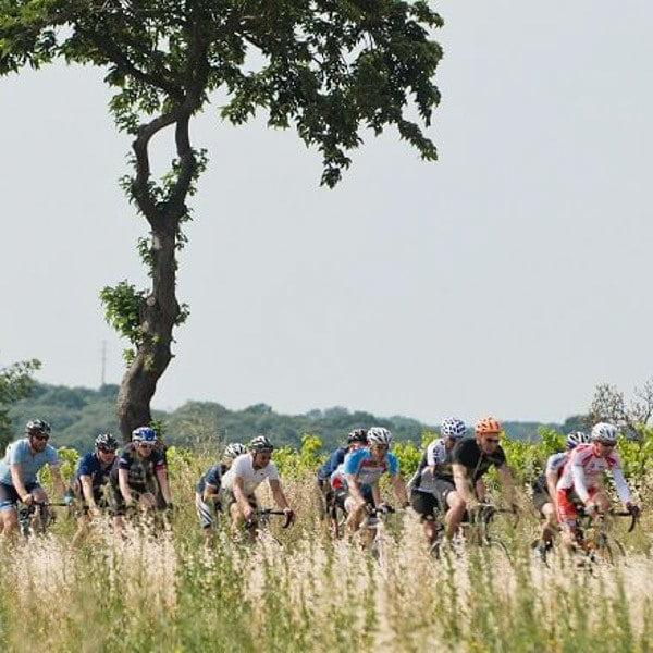 Peloton of cyclists cycling through Tour de France route