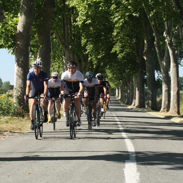 Cyclists on the route of the Tour de France