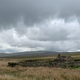 Stone enclosures and buildings dotted over the Yorkshire Dales
