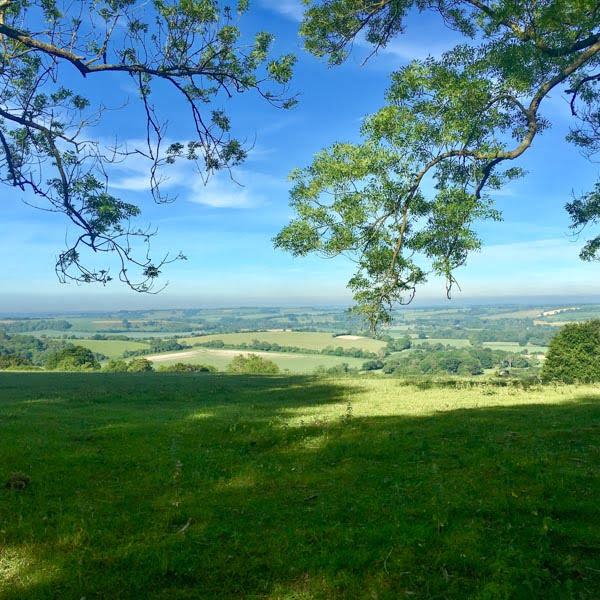 Winchester Hill