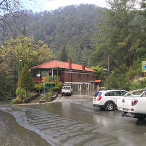 Ranger station in Paphos Forest