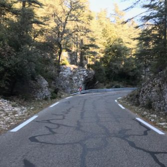Road up the Mont Ventoux cycling climb through the forest