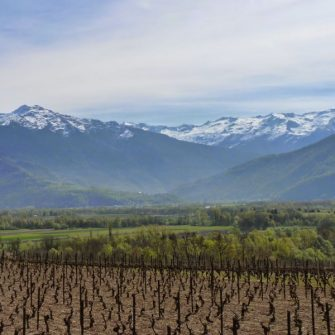 View across vineyards and Lake Geneva