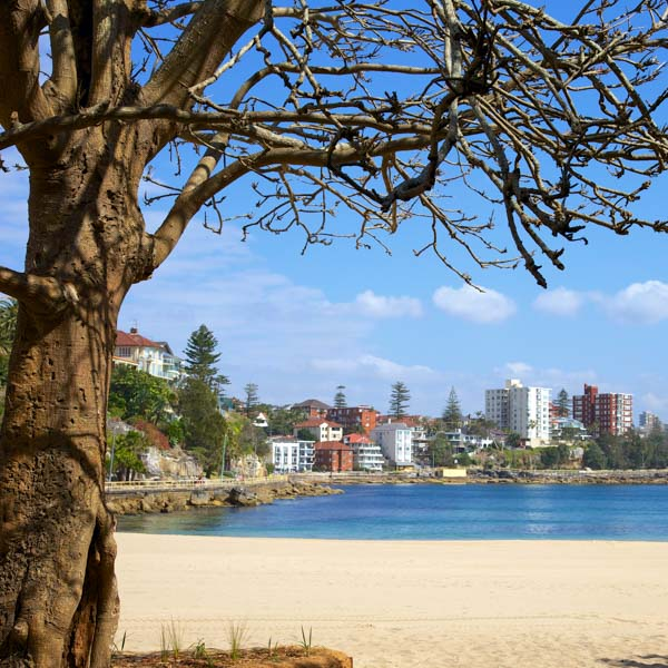 View over Manly Bech, Sydney
