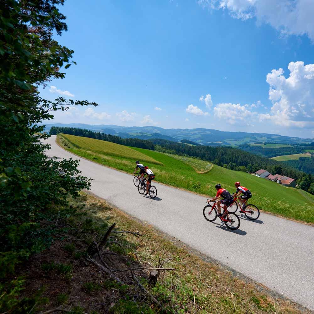 Cycling in Bucklige Welt, Austria credit ®JorisLugtigheid