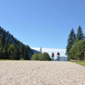 Two cyclists on an Austria mountain in the Bregenz Forest region of Austria(copyright: Bregenzerwald_Arjan Kruik)