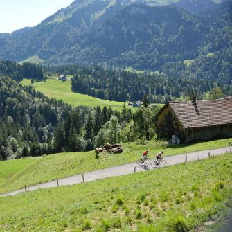 Cycling in Austria; two cyclists in the mountains (credit Bregenzerwald_Arjan Kruik)