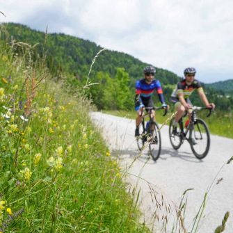 Cycling route in Slovenia through wildflower meadows