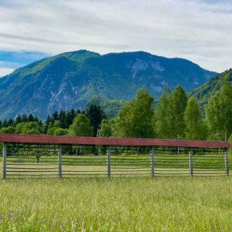 Hay racks you'll see on Slovenia cycling holidays